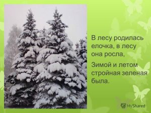 interesnie_fakti_pro_novij_god_detyam