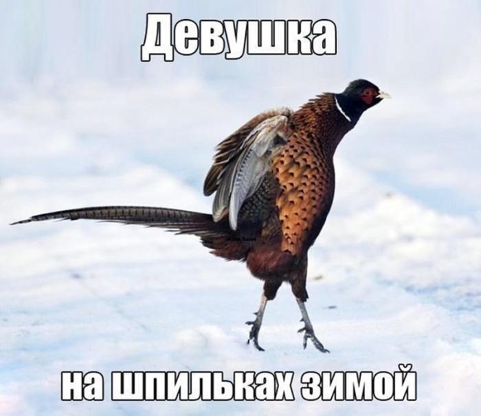 5 Smehoterapiya_Smejtes_kogda_vam_ne_do_smeha
