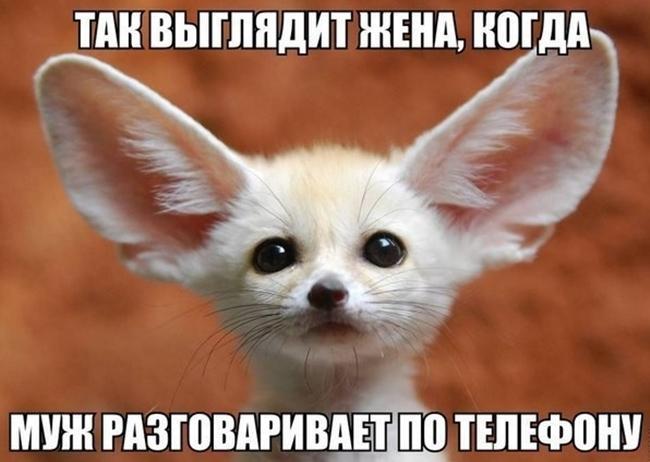 7 Smehoterapiya_Smejtes_kogda_vam_ne_do_smeha