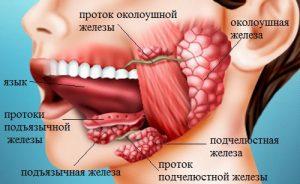 Sukhost_vo_ rtu_prichiny_kakoiy_bolezni