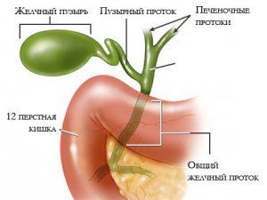 Zabolevaniya_pecheni_simptomy_i_priznaki_bolezni_zhelchnogo_puzyrya