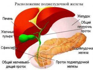 Podzheludochnaya_zheleza_vospalenie_simptomy__i_lechenie