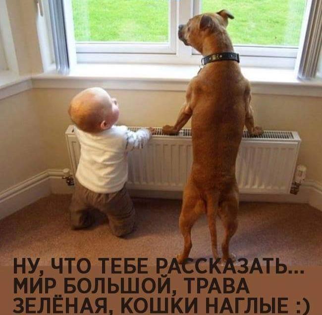 8 Smehoterapiya_Smejtes_kogda_vam_ne_do_smeha