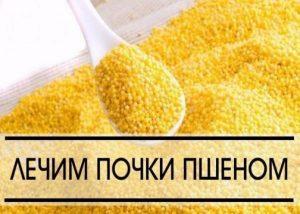 Pochki_simptomy_bolezni_i_lechenie_narodnymi_sredstvami