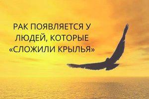 Pochki_simptomy_bolezni_i_lechenie_raka