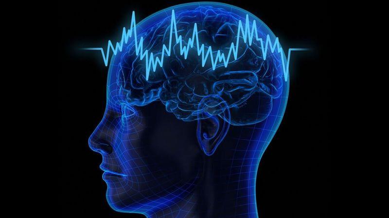 Neiroplastichnost_mozga_zachem_i_kak_ee_razvivat