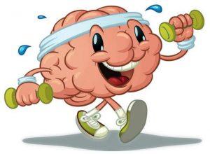 Neiroplastichnost_mozga_zachem_i_kak_ee_razviva