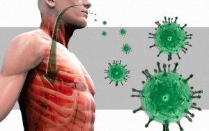 Koronavirus_i_immunitet